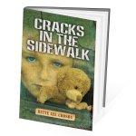 cracksitsidewalk3d