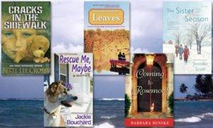 bookbub best promo