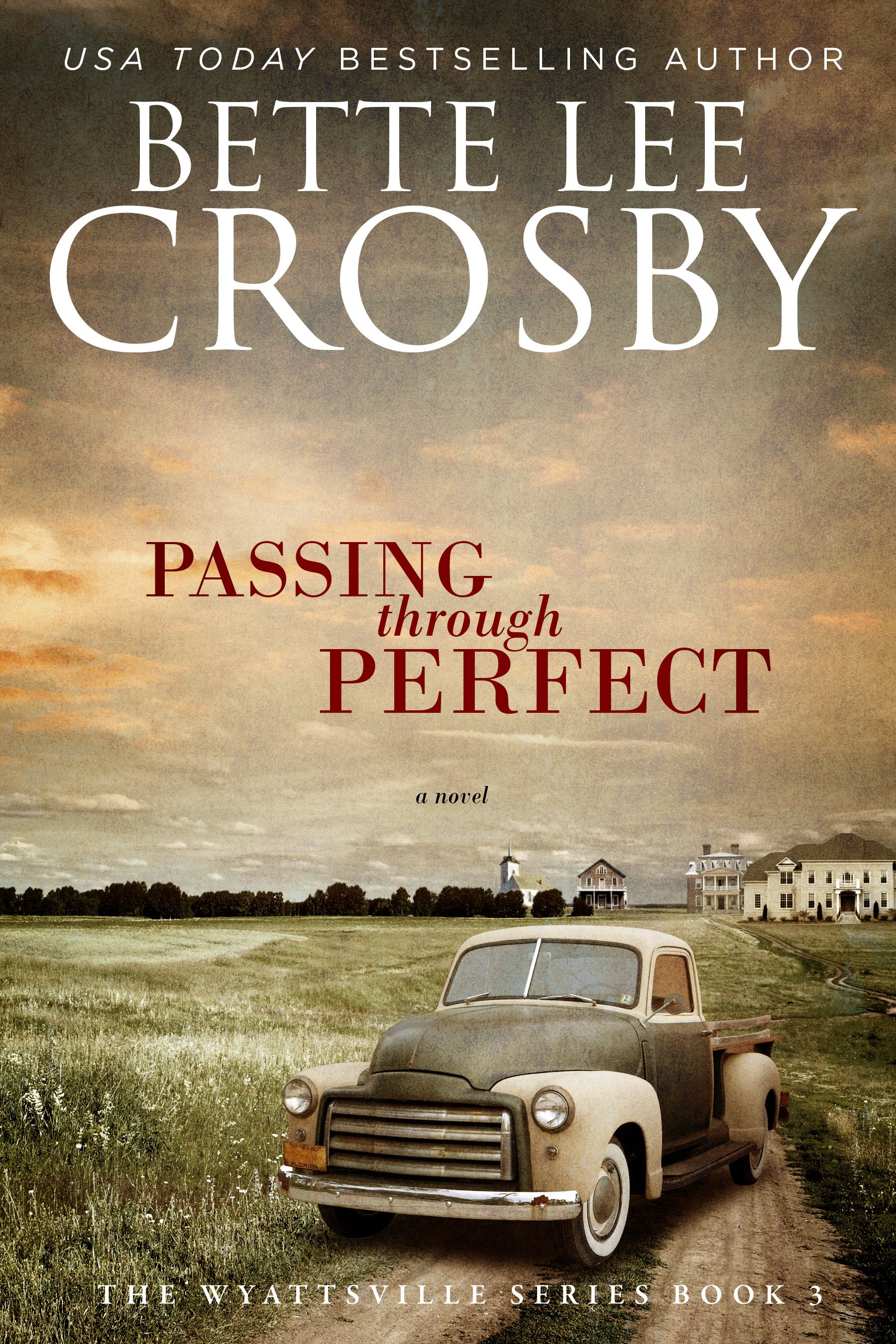 Book Discussion Questions – Passing through Perfect