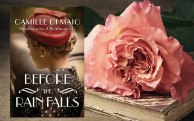 Before the Rain Falls by Camille DiMaio on Bette's Bookshelf