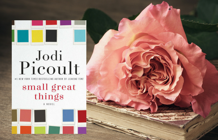 Great Small Things by Jodi Picoult on Bette's Bookshelf