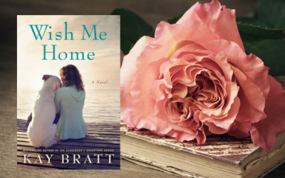 Wish Me Home by Kay Bratt on Bette's Bookshelf